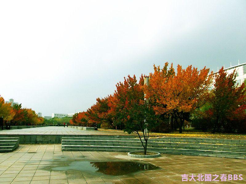 DSCF3094_副本.jpg