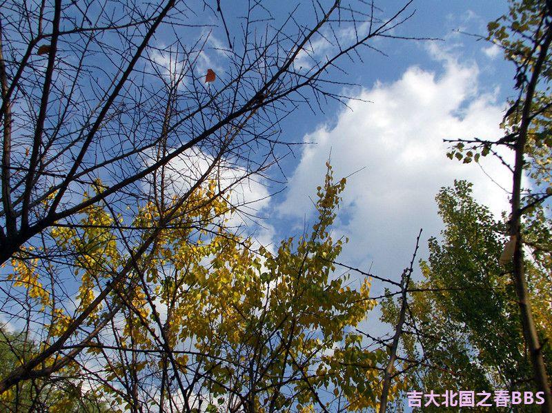 DSCF3401_副本.jpg