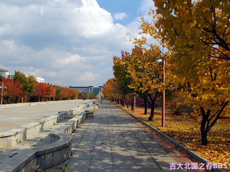 DSCF3442_副本.jpg